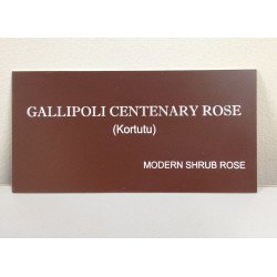 Gallipoli Centenary Rose Nameplate Without Stake