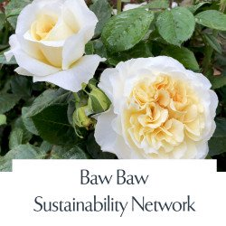 Baw Baw Sustainability Network
