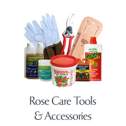 Rose Care, Tools & Accessories