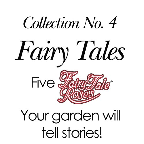 2018 Collection No. 4 - Fairy Tales