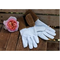 Goat Leather Gloves - Size XS (18)