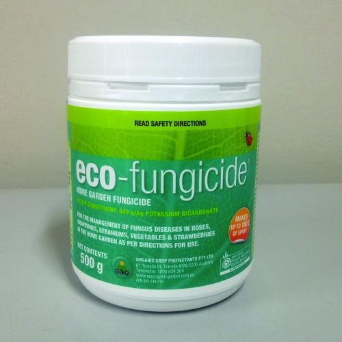 Eco Fungicide 500g